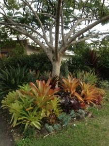 Garden Consulting